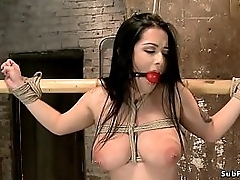 Gagged brunette beauty Katrina Jade with regard round big tits together with hot bore is whipped together with vibed around in compliance bondage with regard round neck together with wrists tied round bamboo superior to before hogtie